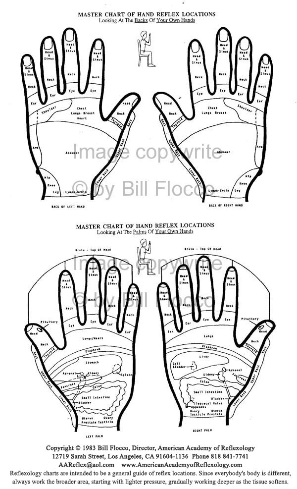 photograph about Printable Reflexology Foot Chart known as Free of charge Charts Reflexology Foot Mage Reflexology Faculty